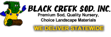 Black Creek Sod Wisconsin